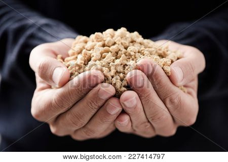 closeup of some chunks of textured soy protein in the hands of a young caucasian man