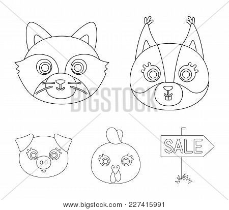 Protein, Raccoon, Chicken, Pig. Animal's Muzzle Set Collection Icons In Outline Style Vector Symbol