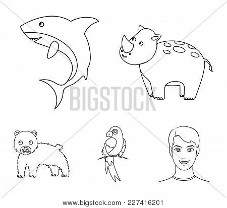 Rhinoceros, Shark, Parrot, Bear.animal Set Collection Icons In Outline Style Vector Symbol Stock Ill