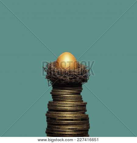 A Golden Egg In A Nest On A Pile Of Coins. The Metaphor Of Accumulation Of Money And Successful Inve