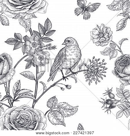 Garden Flowers Roses, Peonies And Dog Rose, Bird And Butterflies. Floral Vintage Seamless Pattern. B