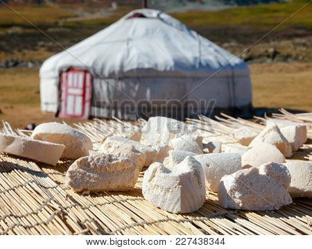 Mongolian dairy product Aaruul or Gurt made from drained sour milk drying on the sun with typical ger in background