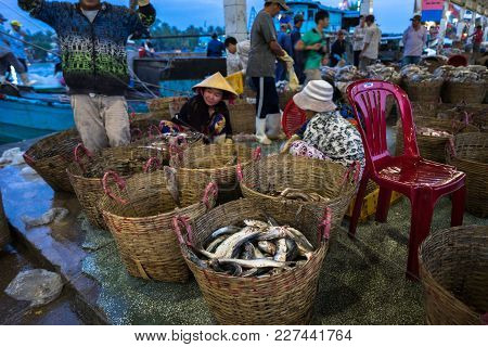 An Giang, Vietnam - Dec 6, 2016: Caught Fishes And Working Activities In Tac Cau Fishing Port At Daw