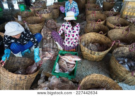 An Giang, Vietnam - Dec 6, 2016: Caught Fishes With Workers Working At Tac Cau Fishing Port At Dawn,