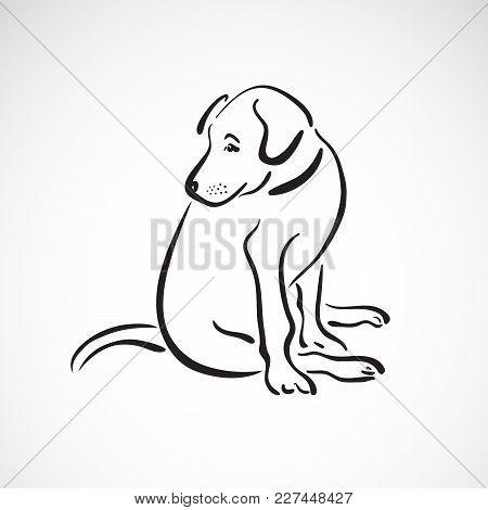 Vector Of Sitting Dog(labrador Retriever) On White Background, Pet. Animals. Easy Editable Layered V