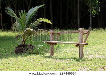 Local Hand Made Wooden Benches In The Garden In Thailand.