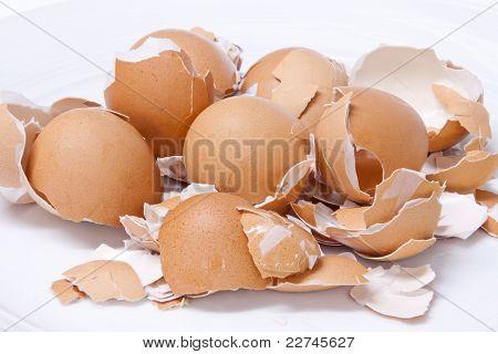 Eggs Shell Scattered