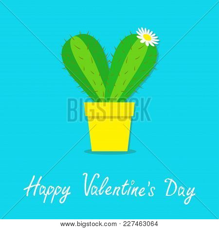 Happy Valentines Day. Cactus Heart Icon In The Pot. White Daisy Chamomile Flower. Desert Prikly Thor