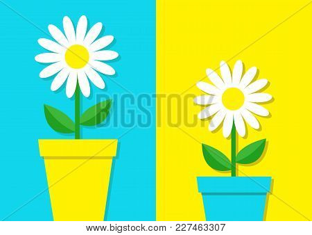 Cactus Icon In Flower Pot Icon Set. Desert Prikly Thorny Spiny Plant. Minimal Flat Design. Growing C