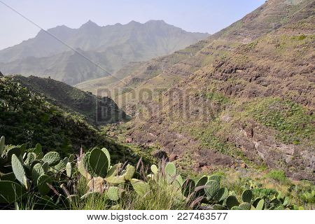 Photo Picture Scenic Photography Landscape European Natural Countryside In Agaete Gran Canaria Canar