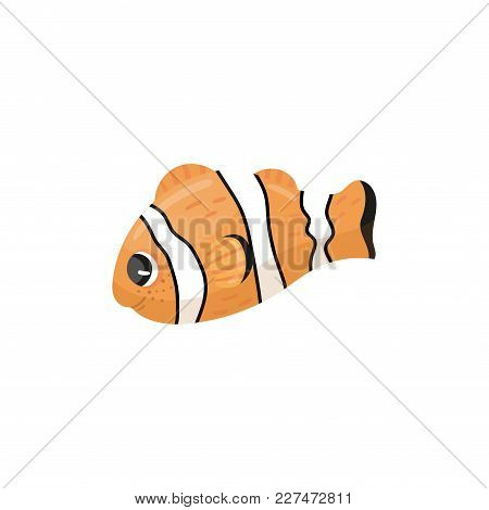 Cartoon Character Of Clownfish. Anemone Fish In Orange, Black And White Colors. Adorable Marine Crea