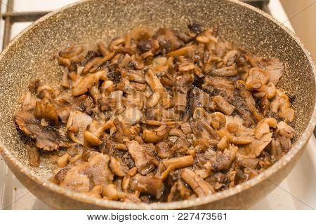Mushrooms Fry. Fried Mushrooms In A Frying Pan. Mushrooms Stew. Preparation Of Mushrooms.