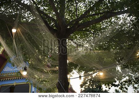 Decoration And Accessory On Tree In Garden Of Bang Mod Festival At Thung Khru District In Bangkok, T