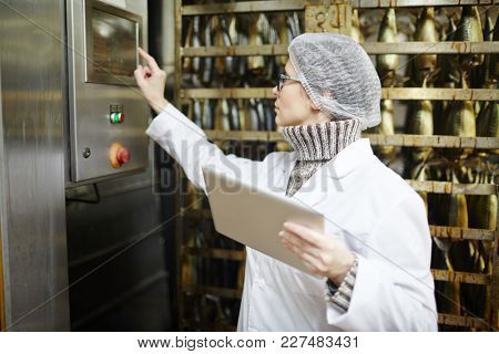 Control staff of fish factory choosing working regime of smoking machine