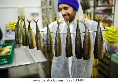 Appetizing smoked mackerels hanging on wire held by man in uniform