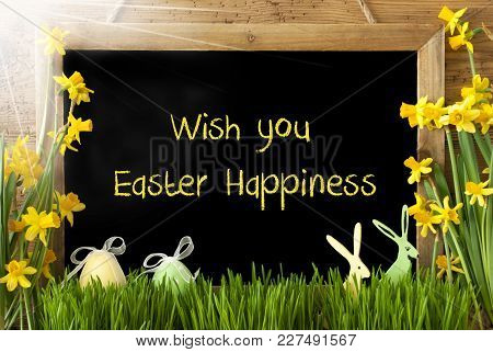 Blackboard With English Text Wish You Easter Happiness. Sunny Spring Flowers Nacissus Or Daffodil Wi