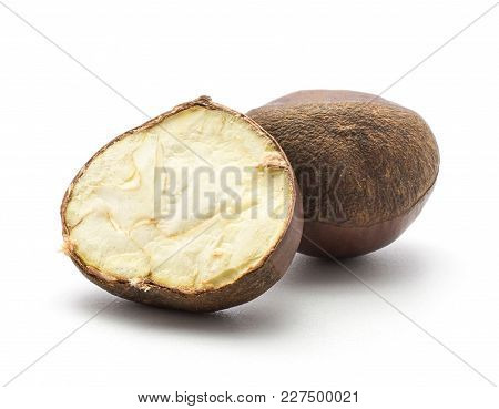 European Chestnut And One Section Half Isolated On White Background Spanish Edible Raw Fresh Brown N