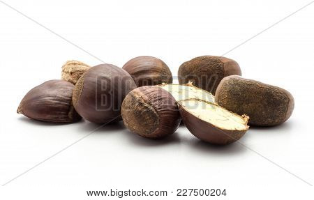 European Chestnuts Spanish Edible Stack Isolated On White Background Raw Fresh Brown Nuts