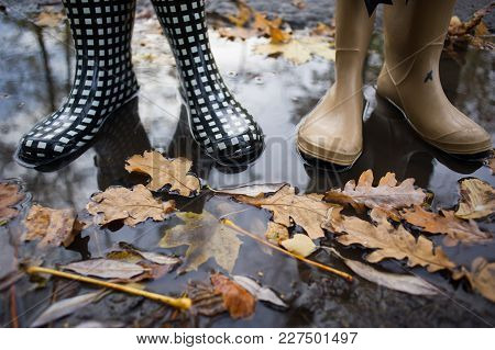 Autumn Fall Concept With Colorful Leaves And Rain Boots Outside. Close Up Of Woman Feet Walking In B