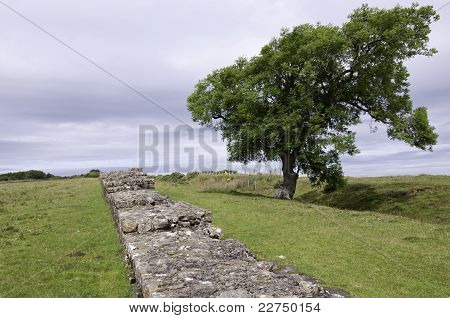 Wall Of Hadrian