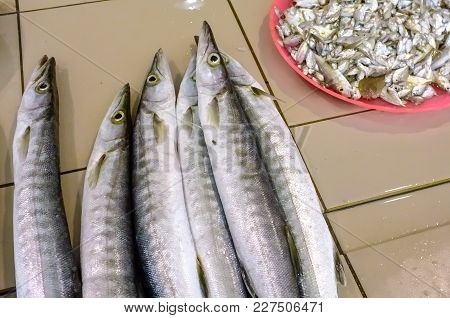 Close Up Image Fresh Fishes In A Market.fish Has Been An Important Source Of Protein And Other Nutri
