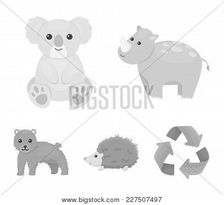 Rhino, Koala, Panther, Hedgehog.animal Set Collection Icons In Monochrome Style Vector Symbol Stock