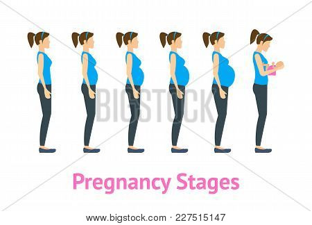 Cartoon Woman Pregnancy Stages Or Steps And Birth Set Care Health Concept Flat Style Design. Vector