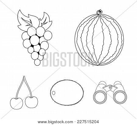 Watermelon, Grapes, Cherry, Kiwi.fruits Set Collection Icons In Outline Style Vector Symbol Stock Il