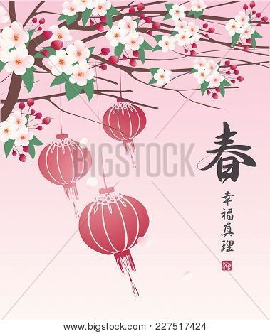 Vector Spring Landscape With Red Paper Lanterns Hanging On Branches Of Blooming Tree With White Flow