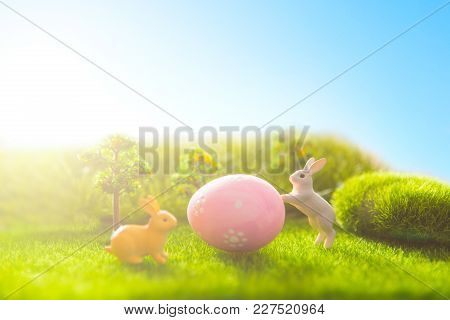 Rabbit On Grass With A Easter Eggs In Park