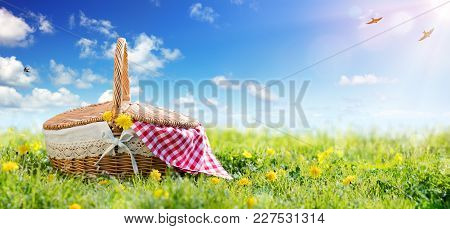 Picnic - Basket On Meadow In A Sunny Day