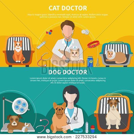 Animal Care Professionals For Cat Dog Veterinarian Doctor 2 Horizontal Banners With Pet Crates Isola
