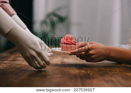 Cropped Shot Of Woman And Mannequin Holding Plate With Cupcake, Unrequited Love Concept
