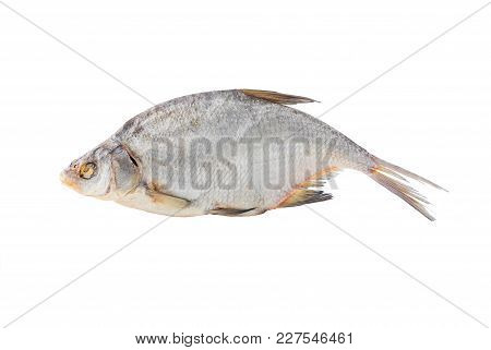 Big Dried Common Bream On A White Background.