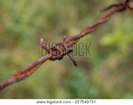 Detail Of An Old Rusty Barbed Wire