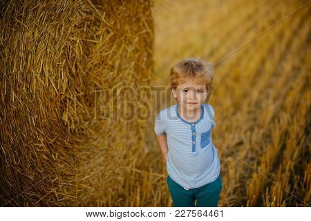 Agritourism, Eco Tourism, Vacation, Travelling. Little Boy At Hay Bale, Summer. Child Play On Farm O