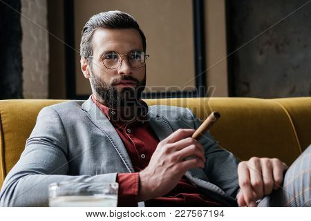 Handsome Bearded Man With Cigar And Ashtray Sitting On Couch
