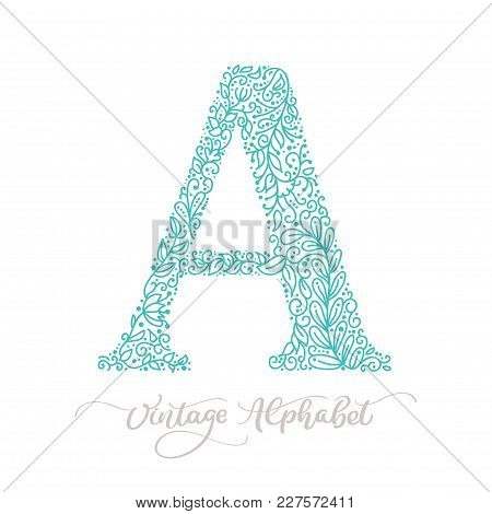 Hand Drawn A Letter Calligraphy Vintage Logo Design Template. Vector Elements For Corporate Identity