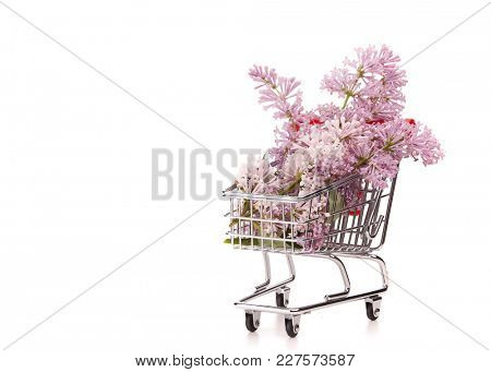 Bouquet of  Lilac flowers on shopping trolley on a white  background. Copy space for adding your content.  Advertising.