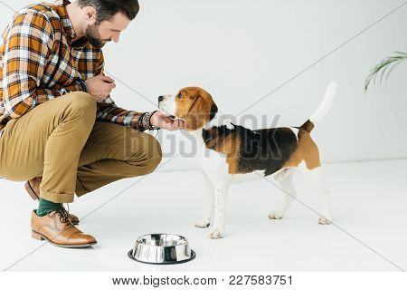 Side View Of Man Palming Dog Near Pet Bowl