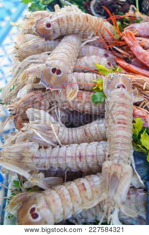 Tiger Prawns In Raw Form Seafood Background