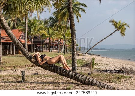 Beautiful Woman Relaxing On The Palm Tree Near The Ocean, Thailand, Asia