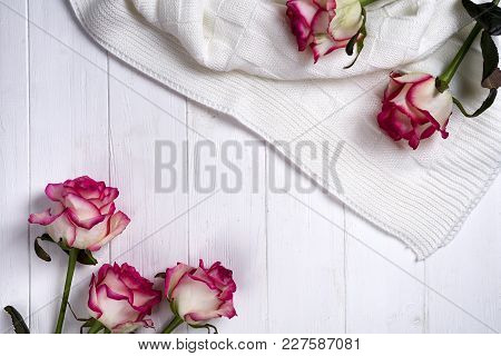 Roses Frame With Plaid On A Wooden White Background. The Concept Of A Post Card With Copy Space, Fla