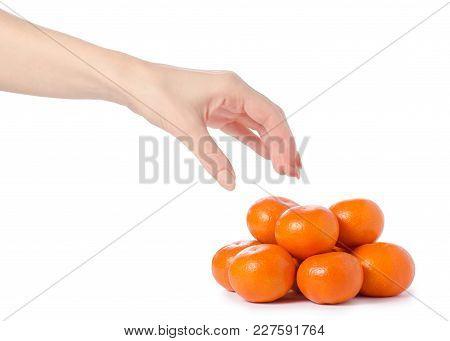 Mandarines In Hands On White Background Isolation