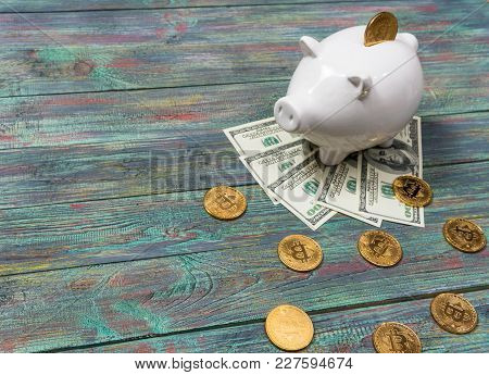 White Piggy Bank With One Gold Bitcoin Coin