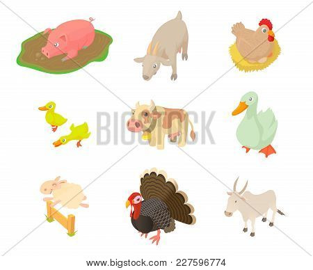 Domestic Animals Icon Set. Cartoon Set Of Domestic Animals Vector Icons For Web Design Isolated On W