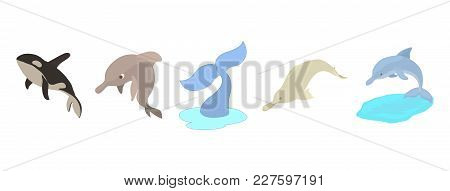 Sea Mammals Icon Set. Cartoon Set Of Sea Mammals Vector Icons For Web Design Isolated On White Backg