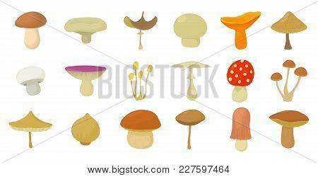 Mushroom Icon Set. Cartoon Set Of Mushroom Vector Icons For Web Design Isolated On White Background