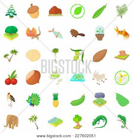 Natural Resource Wealth Icons Set. Cartoon Set Of 36 Natural Resource Wealth Vector Icons For Web Is