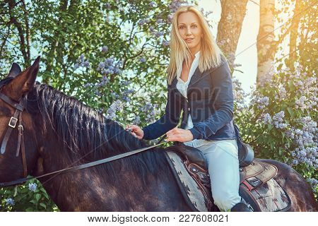 Charming Beautiful Blonde Jockey Riding A Brown Horse In The Flower Garden.